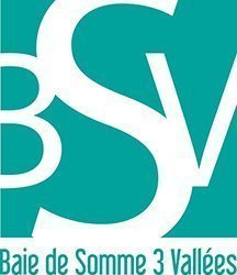 logotypeBS3V trans